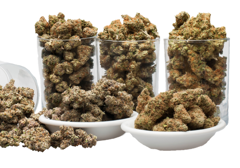 Amazing Weekly OUNCE Special by The Healing Co