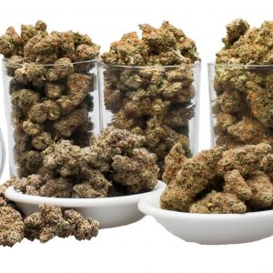 Amazing Weekly OUNCE Special - The Healing Co medical cannabis medical marijuana products