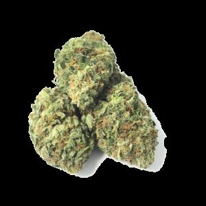 medical cannabis medical marijuana products Death Tuna - Indica - The Healing Co
