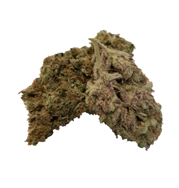 Blackberry Kush - Premium Flower - The Healing Co