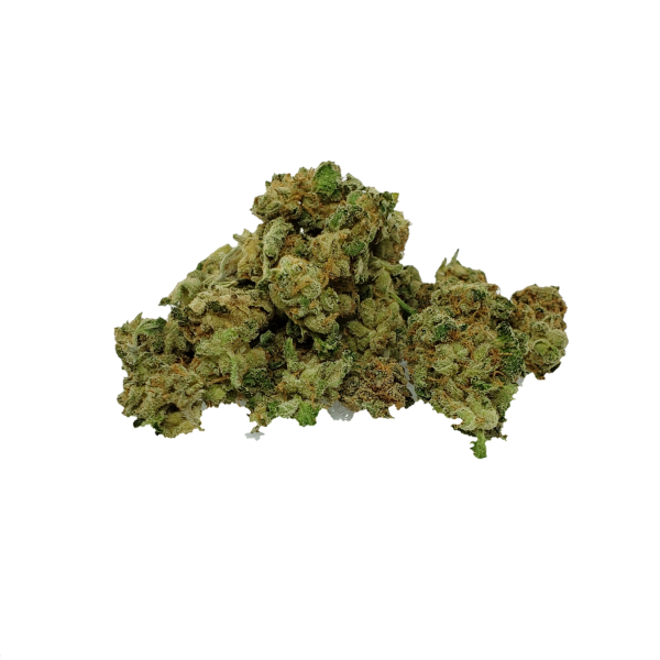 Moby Dick AAAA Premium Small Buds - The Healing Co
