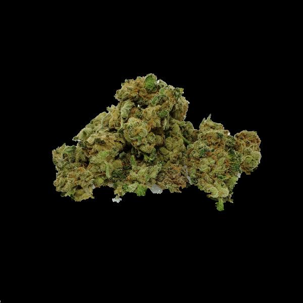 Moby Dick AAAA Popcorn Bud - Sativa - The Healing Co