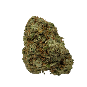 Key Lime Pie - Indica Dominate Hybrid - The Healing Co