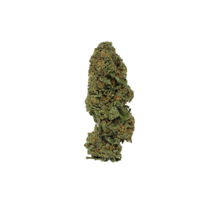 Girl Scout Cookies - Indica Dominant Hybrid - The Healing Co