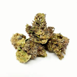 Premium Small Buds - The Healing Co
