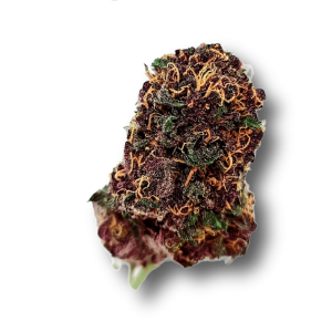 Purple Lamborghini Exotic AAAA - Indica - The Healing Co