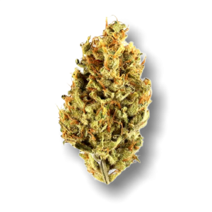 Lemon Haze x Blackberry Sour - Sativa - The Healing Co