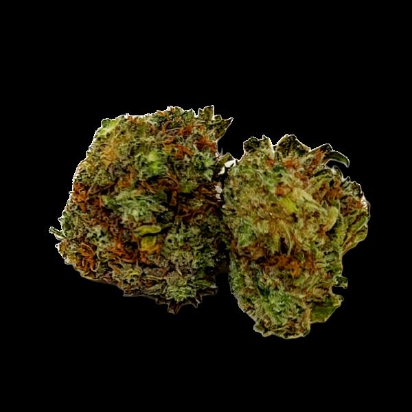 God's Green Crack - Sativa Dominate Hybrid - The Healing Co