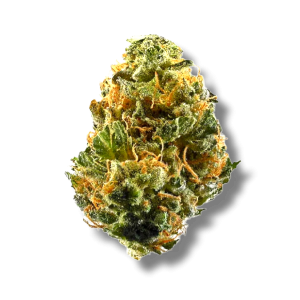 Space Cake - Hybrid - The Healing Co
